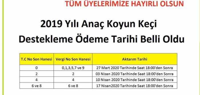 2019 Anaç Koyun Keçi Desteklemesi Ödemeleri Başladı.